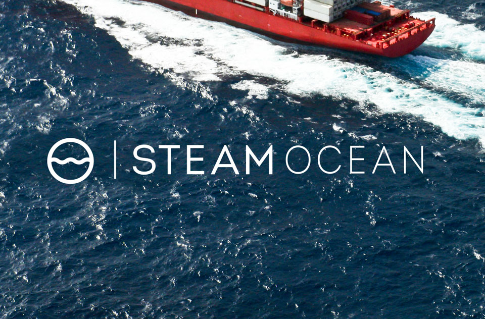 Tiny Giant - Steam Logistics - Tiny Giant - Steam Logistics - Corporate Identity System